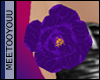 [w]purple rose