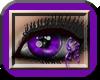 [sp] Purple Dreamer M/F
