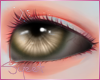 [SM]Eyes B²eUnisex