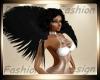 Raven Feather Shrug