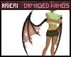 Arieri | Damaged Wings