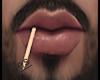 Toothpick M | Derive