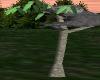 ~TQ~Cuddle Koala