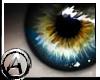 (A) Blue Eyes