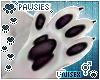 ❄ Lumi Chubby Paws