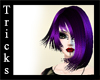 Purple Passion Alexandra