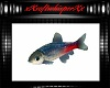 Indy Minnow Fish