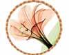 Crea Rugs Flower 1