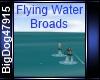 [BD] FlyingWaterBroads