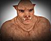 Pig Skin Avi