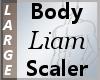 Body Scaler Liam L