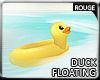 |2' Floating Duck