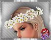 [LD]Helle FlowerscW