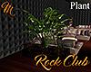 [M] Rock Club Plant