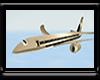 {*A} Pvt. Executive Jet