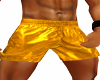 Swim Trunks ( Gold )
