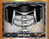 Belt/Cinturão