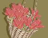 Coral Flower Basket