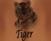 Tiger Tattoo F