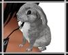 Bunny on Shoulder v3