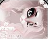 [Pets] Kheo | Wendy