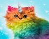 rainbowKitty
