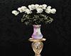 Cavalli White Roses