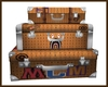 MCM Bape Suitcases