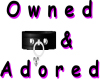 Owned and adored 256x256