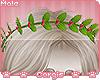 c; Mohi Wreath