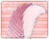 E - Prim Tail v3