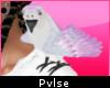 Shoulder Pet | Parrot
