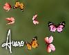 Blooms Butterflies