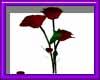 (sm)ruby red rose animat