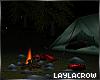 ☽ camping