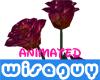 -WG- Animated Roses