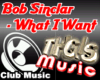 Bob Sinclar  What I Want
