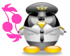 Airforce penguin