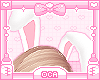 ♡ Bunny Ears v2
