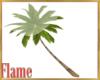 Palm tree seating