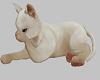 Animated Kitten