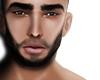 Bearded Skin T3