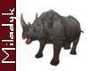 MLK Ani Rhino