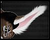 CK-Muzi-Ears 2
