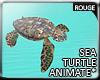 |2' Ocean Turtle