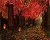AUTUMN*otoño