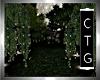 CTG     THE  PARK