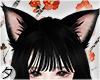 💕Neko Shoujo [Ears]