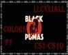 BLACK PUMAS COLORS(p1)