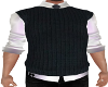 Blue Vest/Tie n Shirt